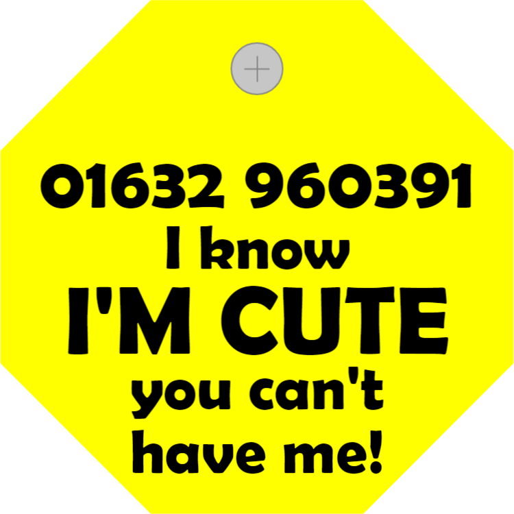 Yellow pet tag