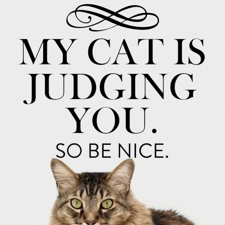 My cat is judging you - Aluminium composite panel
