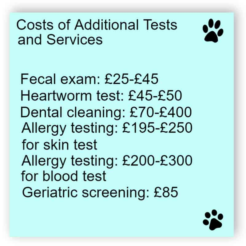 Veterinary service sign